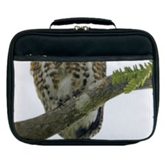Owl Bird Lunch Bag by Sapixe