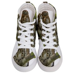 Owl Bird Men s Hi Top Skate Sneakers