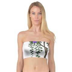 Image Cropped Tree With Flowers Tree Bandeau Top by Sapixe