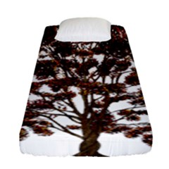 Tree Vector Ornament Color Fitted Sheet (single Size)