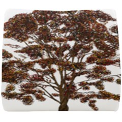 Tree Vector Ornament Color Seat Cushion
