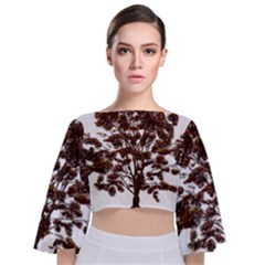 Tree Vector Ornament Color Tie Back Butterfly Sleeve Chiffon Top