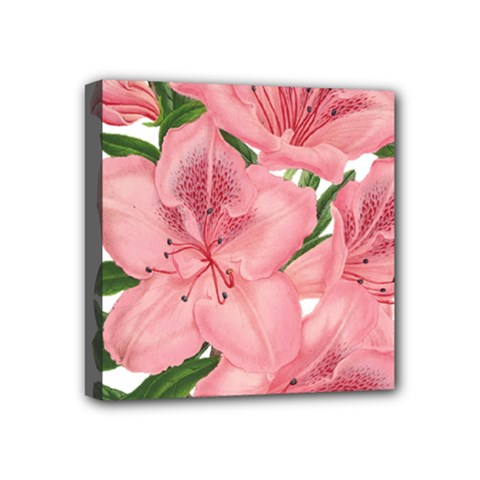 Flower Plant Blossom Bloom Vintage Mini Canvas 4  X 4  by Sapixe