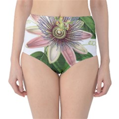 Passion Flower Flower Plant Blossom Classic High Waist Bikini Bottoms by Sapixe