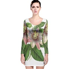 Passion Flower Flower Plant Blossom Long Sleeve Velvet Bodycon Dress by Sapixe