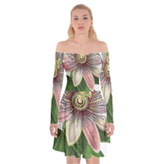 Passion Flower Flower Plant Blossom Off Shoulder Skater Dress