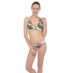 Passion Flower Flower Plant Blossom Classic Banded Bikini Set