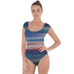 Background Horizontal Lines Short Sleeve Leotard