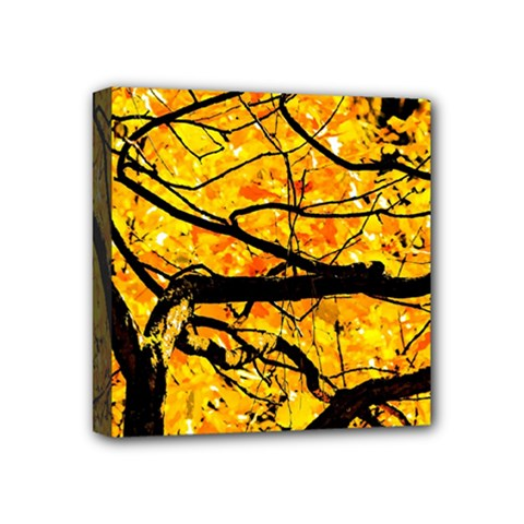 Golden Vein Mini Canvas 4  X 4  by FunnyCow