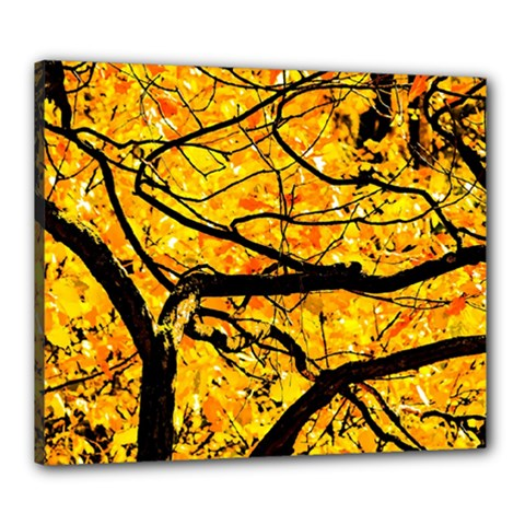 Golden Vein Canvas 24  X 20