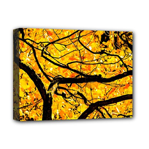 Golden Vein Deluxe Canvas 16  X 12   by FunnyCow