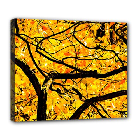 Golden Vein Deluxe Canvas 24  X 20   by FunnyCow
