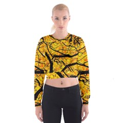 Golden Vein Cropped Sweatshirt