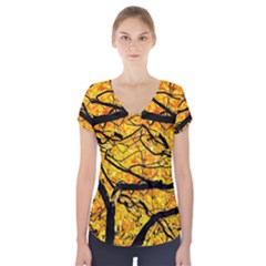 Golden Vein Short Sleeve Front Detail Top by FunnyCow
