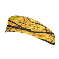 Golden Vein Stretchable Headband