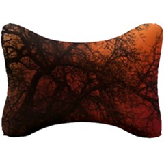 Sunset Silhouette Winter Tree Seat Head Rest Cushion