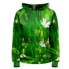 Inside The Grass Women s Pullover Hoodie