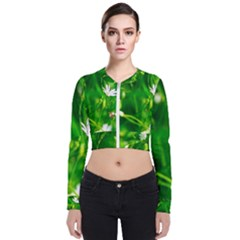 Inside The Grass Bomber Jacket