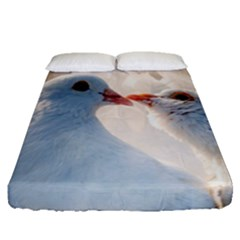 Doves In Love Fitted Sheet (queen Size) by FunnyCow