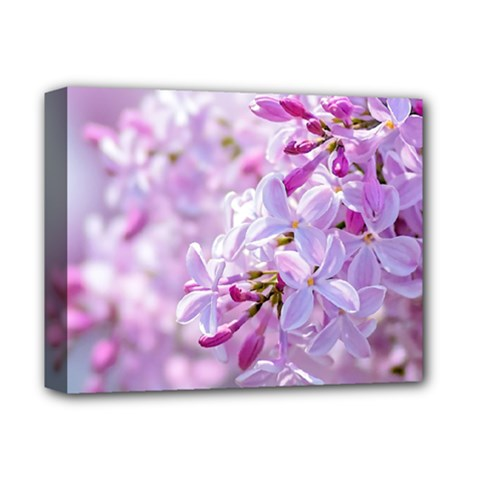 Pink Lilac Flowers Deluxe Canvas 14  X 11  by FunnyCow