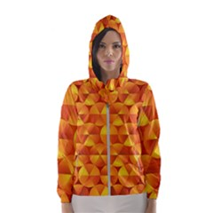 Background Triangle Circle Abstract Hooded Windbreaker (women)