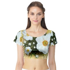 Summer Anemone Sylvestris Short Sleeve Crop Top