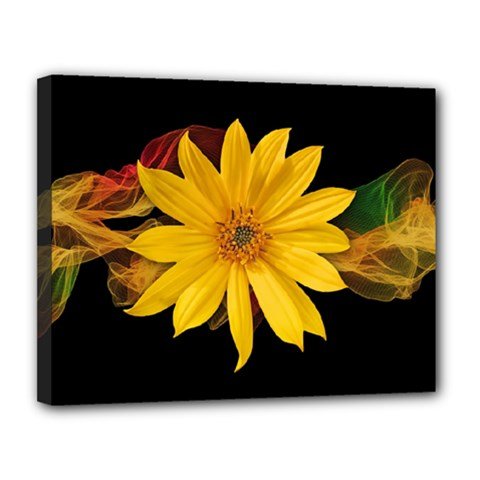 Sun Flower Blossom Bloom Particles Canvas 14  X 11