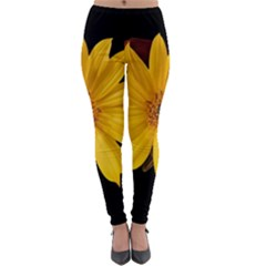 Sun Flower Blossom Bloom Particles Lightweight Velour Leggings by Nexatart