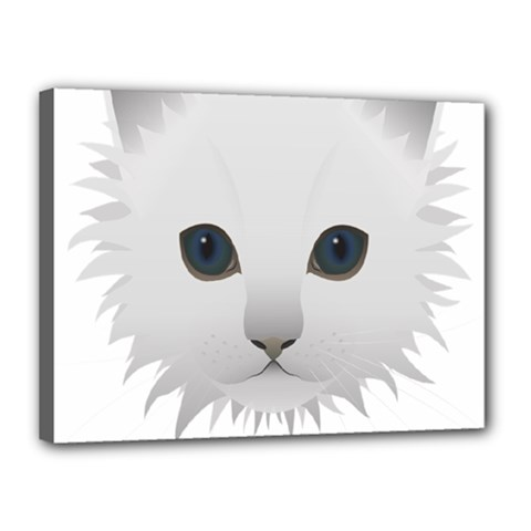 Cat Animal Pet Kitty Cats Kitten Canvas 16  X 12  by Sapixe