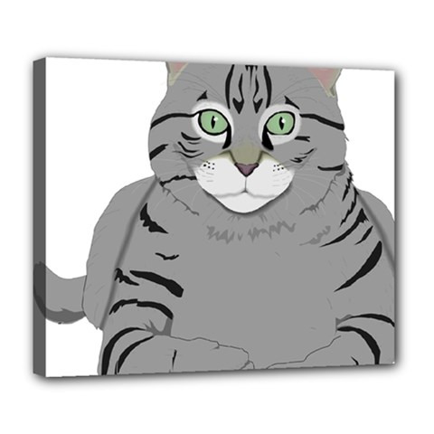 Cat Kitty Gray Tiger Tabby Pet Deluxe Canvas 24  X 20   by Sapixe
