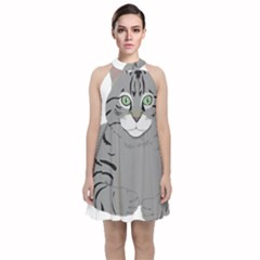 Cat Kitty Gray Tiger Tabby Pet Velvet Halter Neckline Dress