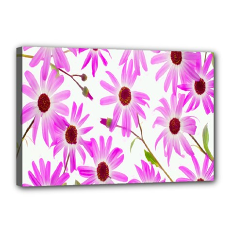 Pink Purple Daisies Design Flowers Canvas 18  X 12
