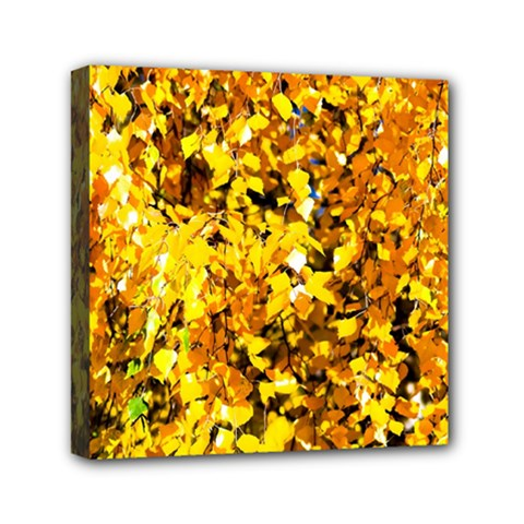 Birch Tree Yellow Leaves Mini Canvas 6  X 6  by FunnyCow