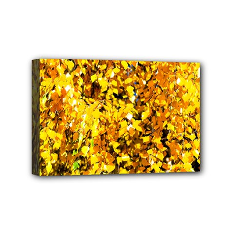 Birch Tree Yellow Leaves Mini Canvas 6  X 4  by FunnyCow