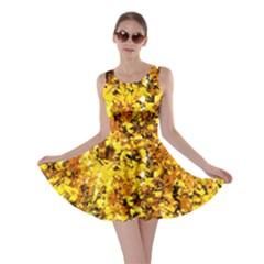 Birch Tree Yellow Leaves Skater Dress by FunnyCow