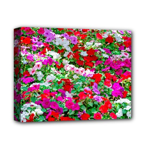 Colorful Petunia Flowers Deluxe Canvas 14  X 11  by FunnyCow