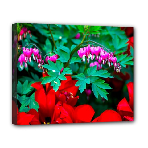 Bleeding Heart Flowers Deluxe Canvas 20  X 16   by FunnyCow