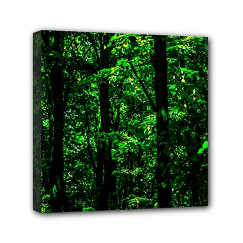 Emerald Forest Mini Canvas 6  X 6  by FunnyCow