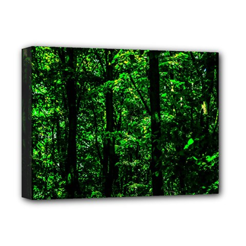 Emerald Forest Deluxe Canvas 16  X 12   by FunnyCow
