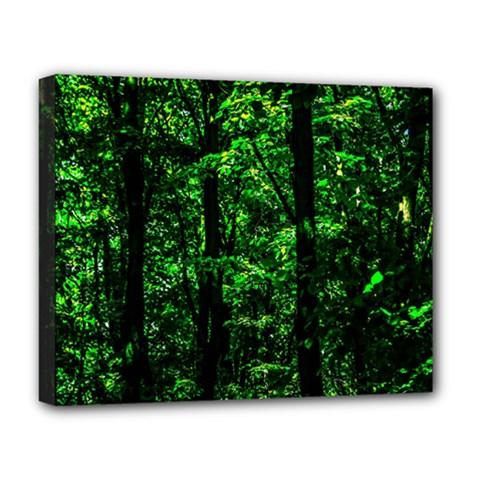 Emerald Forest Deluxe Canvas 20  X 16   by FunnyCow