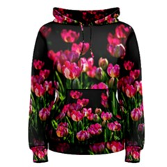 Pink Tulips Dark Background Women s Pullover Hoodie by FunnyCow