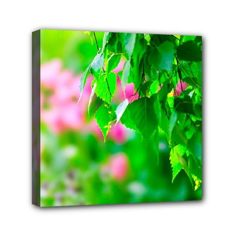 Green Birch Leaves, Pink Flowers Mini Canvas 6  X 6  by FunnyCow