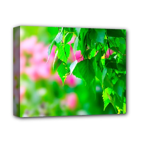 Green Birch Leaves, Pink Flowers Deluxe Canvas 14  X 11  by FunnyCow