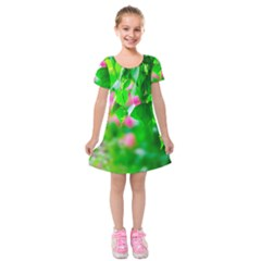 Green Birch Leaves, Pink Flowers Kids  Short Sleeve Velvet Dress by FunnyCow