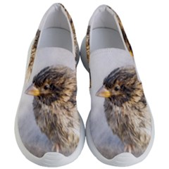 Funny Wet Sparrow Bird Women s Lightweight Slip Ons by FunnyCow