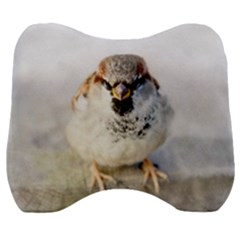 Do Not Mess With Sparrows Velour Head Support Cushion