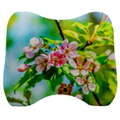 Crab Apple Flowers Velour Head Support Cushion by FunnyCow