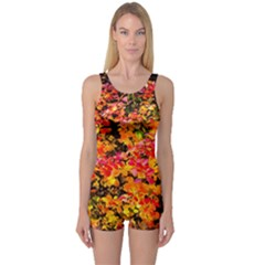 Orange, Yellow Cotoneaster Leaves In Autumn One Piece Boyleg Swimsuit by FunnyCow