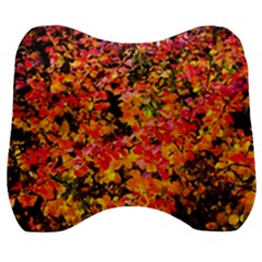 Orange, Yellow Cotoneaster Leaves In Autumn Velour Head Support Cushion by FunnyCow
