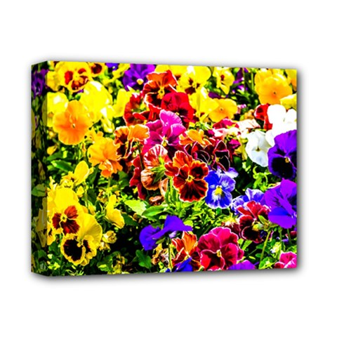 Viola Tricolor Flowers Deluxe Canvas 14  X 11  by FunnyCow